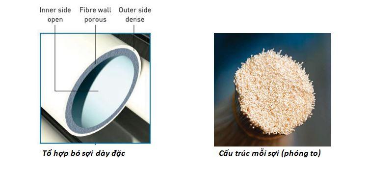 máy tạo khí nitơ dạng màng